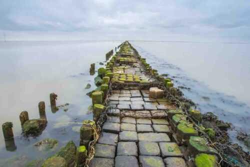 Ram Setu Floating Stone