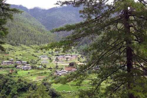 Trekking-in-Bhutan-pixs