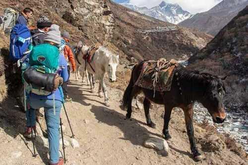 Trekking-nepal-pics