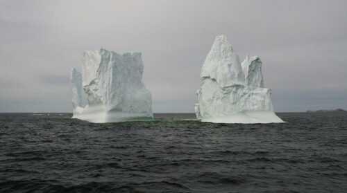 adventure-Watch-Icebergs-in-Newfoundland