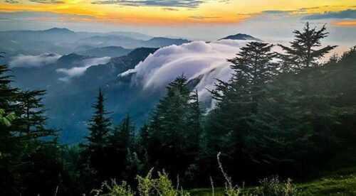 Mashobra  Places to Visit in Himachal Pradesh