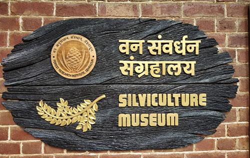 Silviculture Museum