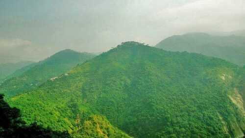 palampur Places to Visit in Himachal Pradesh
