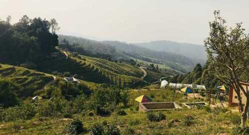 Chaubatia Gardens Places to Visit in Ranikhet