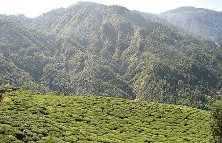 darjeeling travel blog