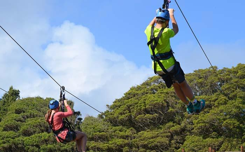 Zipline Canopy   Adventure Sports in Los Angeles