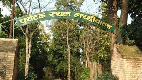 Lacchiwalla Dehradun Travel Guide