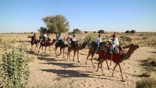 Jaisalmer Backpacker Safari