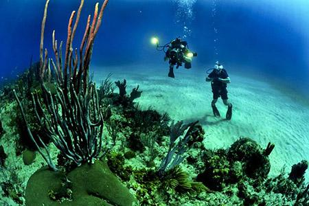 Scuba Diving Water Sports in Lakshadweep