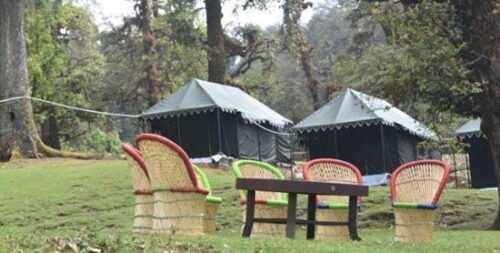 Luxury Tents in Chopta