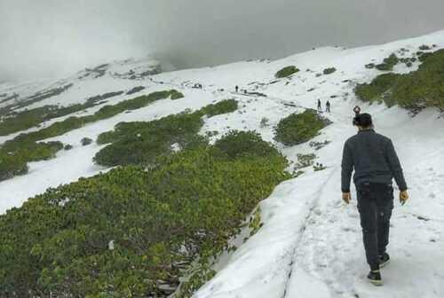 Chopta Trekking