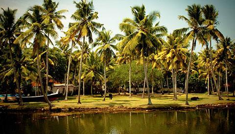 Backwater Experience in south india