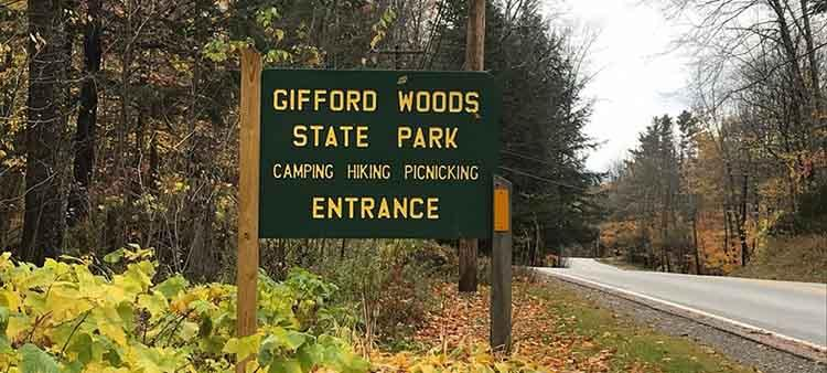 Explore Gifford Woods State Park