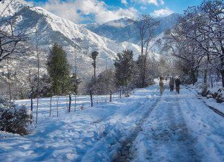 Best Places to Visit in Chail
