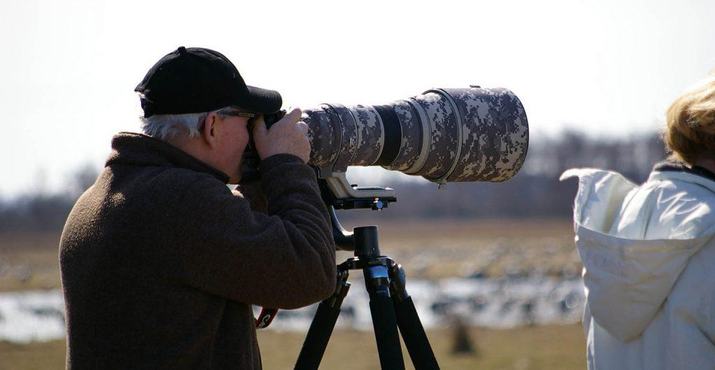 Spectacular Bird Watching