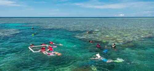 Great Barrier Reef Cruises & Scenic Flights