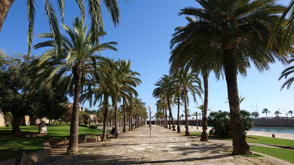 Traveling Palma de Mallorca